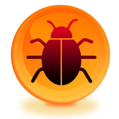 Bug Sweep In Your Home in Worcester